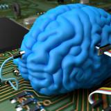 мозг против процессора