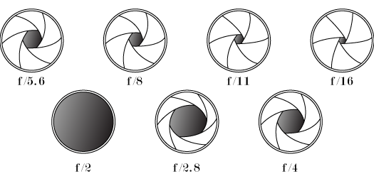 наглядное представление диафграгмы объектива
